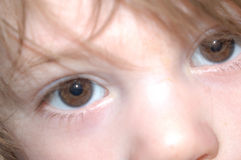Eyes of a child Royalty Free Stock Image
