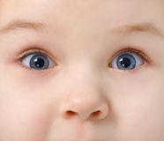 Eyes of child full of interest Royalty Free Stock Photography