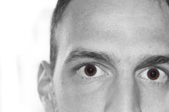 Eyes close up face. Pair of eyes of male focus on the eye isolated on white background wondering Stock Image