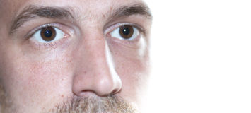 Eyes close up face. Pair of eyes of male focus on the eye isolated on white background wondering Stock Photography