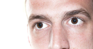 Eyes close up face. Pair of eyes of male focus on the eye isolated on white background wondering Stock Images