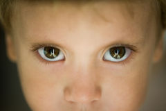 Eyes close-up little boy Stock Photography
