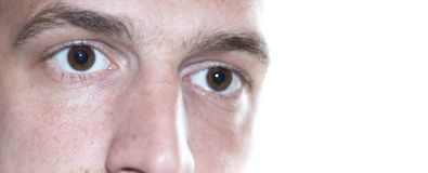 Eyes close up. Pair of brown eyes of male focus on the eye isolated on white background wondering Royalty Free Stock Photo