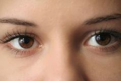 Eyes closeup Royalty Free Stock Photography