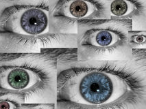 Eyes a colagem fotografia de stock royalty free