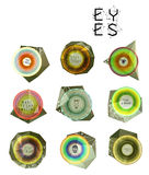 Eyes collection, human pupil Royalty Free Stock Photo