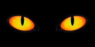 Eyes in the dark. Bright feline eyes in the darkness Stock Photos