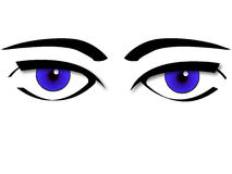 Eyes design. Eyes isolated on white design royalty free illustration