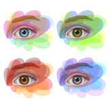 Eyes with different colors with seasonal design Stock Images