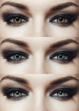 Eyes of different colors Stock Photos