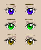 Eyes of different colors. Vector. Stock Image