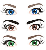 Eyes of different colors. Vector set eyes of different colors vector illustration