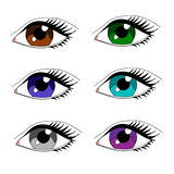 Eyes of different colors Royalty Free Stock Images