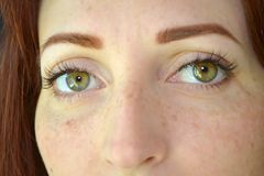 Eyes of girl with red hair and green eyes with freckles with eyelash extension on dark background seriously look forward stock photo