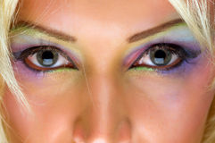 Eyes gray Stock Photography