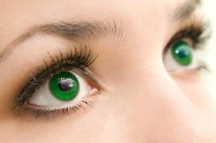 Eyes green. Beautiful female green eyes, very close, Profile Adobe RGB (1998