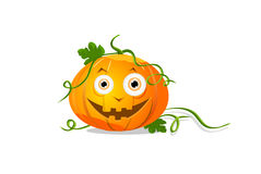 eyes halloween pumpa Royaltyfri Foto