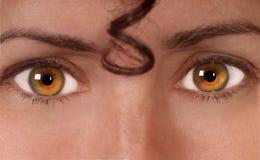 Eyes har den Royaltyfria Bilder