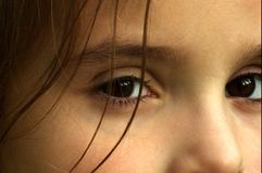The eyes have it! Stock Photos
