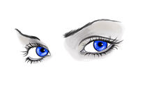 Eyes isolated. Blue eyes of the woman Stock Images