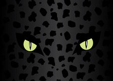Eyes of the jaguar. Stock Images