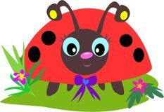 eyes ladybug Стоковое Изображение RF