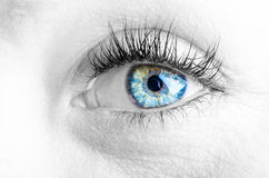 Eyes and long eyelashes Stock Photography