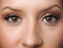 Eyes with long lashes. Close up of face with focus on beautiful eyes with long lashes Royalty Free Stock Photography