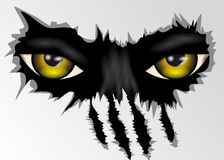 Eyes look. Evil yellow eyes animal looking. 10 EPS royalty free illustration