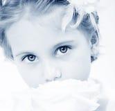eyes magi Arkivbilder