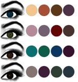 eyes makeup Matcha ögonskugga för att syna färg Arkivbilder
