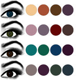 Eyes makeup.Matching eyeshadow to eye color. Stock Images