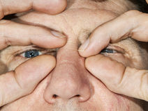 Eyes of a man in detail Stock Image