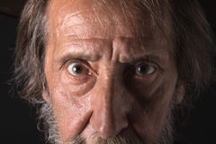 Eyes of an old bearded man, looking at the camera Royalty Free Stock Photo