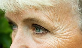 Eyes of old woman Stock Photos