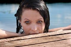 eyes racoon Стоковые Фотографии RF