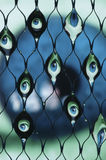 Eyes refracted in Water. Droplets in a net Stock Image