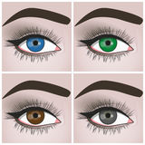Eyes. Set of female eyes of different colors vector illustration