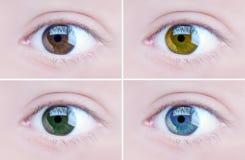 Eyes royalty free stock photography