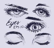 Eyes set. Hand drawn sketch. Vector illustration Royalty Free Stock Images