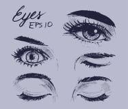 Eyes sketch. Eyes set. Hand drawn sketch. Vector illustration stock illustration
