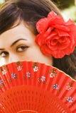 eyes spanjor Royaltyfri Foto