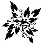 Eyes tattoo. Eyes decorated with leaves, usable as tattoo, but also to decorated shirt Royalty Free Stock Photo