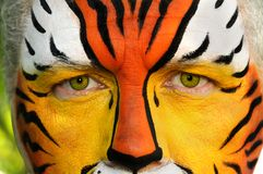Eyes of a Tiger Royalty Free Stock Photo