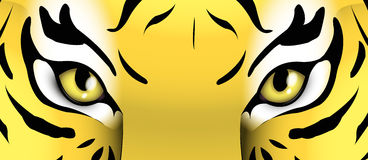 Eyes of a tiger. Illustration of eyes of a tiger Stock Photos