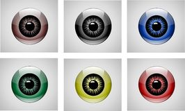 Eyes vector. Six color glass eyes on the gray vector illustration
