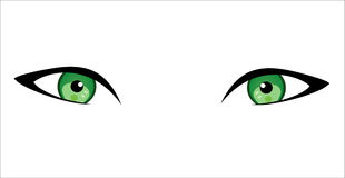 Eyes in white background. Stock Images