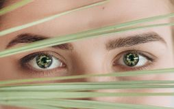 Eyes woman look prickly eyebrows palm pupils royalty free stock photos