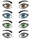 Eyes of Woman Set Royalty Free Stock Image