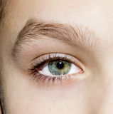 The eyes of a young boy Stock Photography